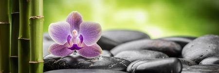 bambu: zen piedras de basalto, orquídeas y bambú