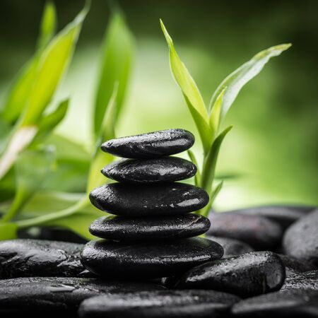zen spa: zen basalt stones and bamboo