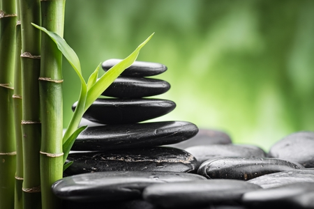 zen: still life with zen basalt stones and bamboo