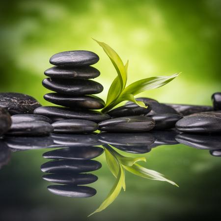 black stones: zen basalt stones and bamboo