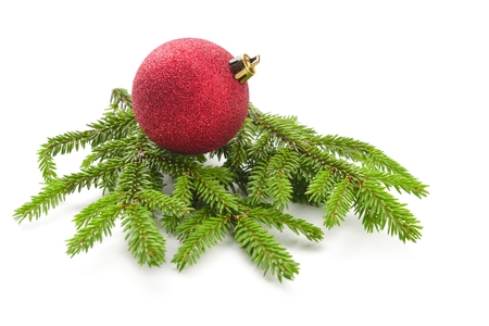 christmas tree branch: fir tree isolated on white Stock Photo