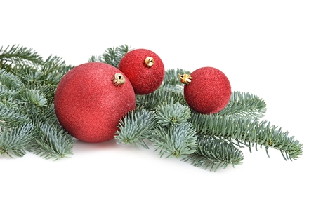 holiday backgrounds: fir tree isolated on white Stock Photo