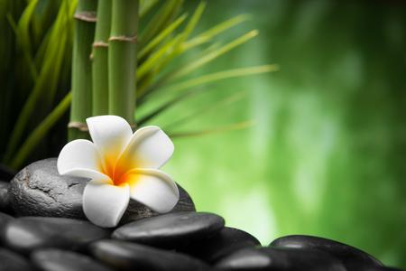 medicine background: frangipani and bamboo on the zen basalt stones