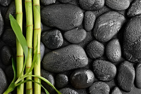 zen basalt stones and bamboo leaves Stock fotó