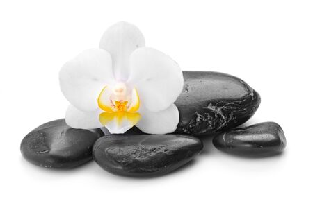 zen basalt stones and orchid  isolated on white Stock fotó