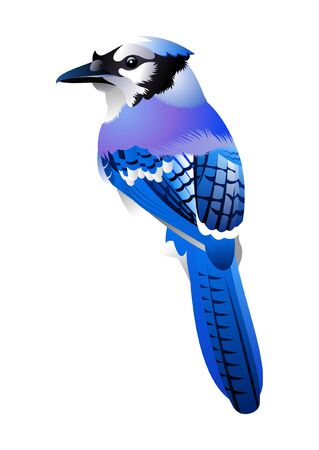blue bird Stock Vector - 9870948