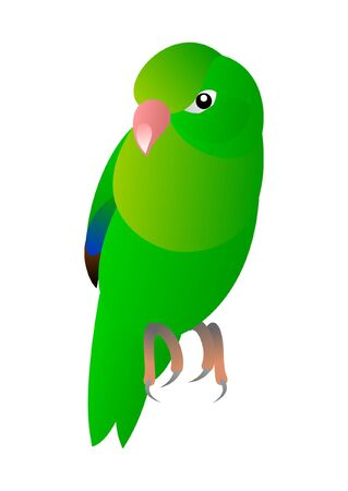 small green bird