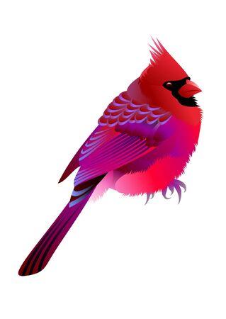 pink bird Vector