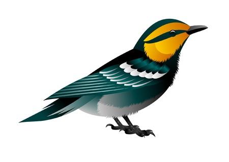 tweet icon: amarillo encabezada blue bird Vectores