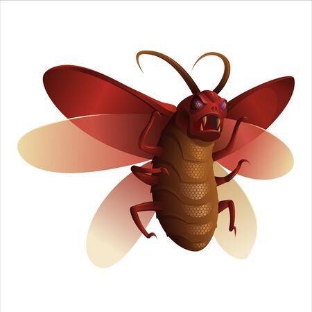conceptual insects