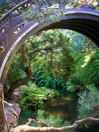 Japanese Tea Garden in San Francisco with the bridge and pond Imagens