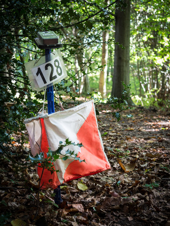 requiring: Orienteering is a family of sports requiring navigational skills using map and compass to navigate from point to point in diverse and usually unfamiliar terrain, usually as a race
