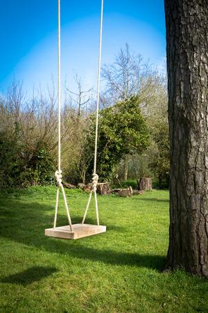 columpio: Oscilación del árbol en el jardín con un árbol alto, el cielo azul y la hierba verde