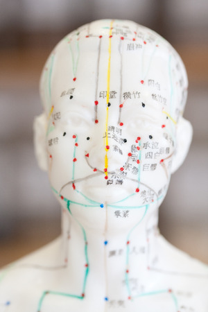 meridians: Head shot of male acupuncture model