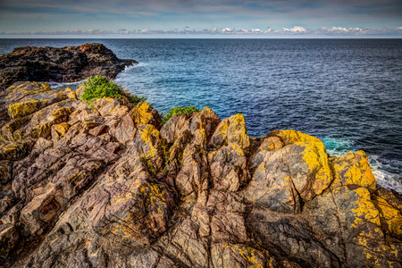 Late afternoon landscape view of calm seas over yellow tipped rocks at Kiama, New South Wales. Фото со стока