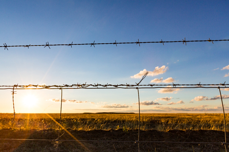 Looking though a barbed wire fence of a farming property, across empty fields and into the late afternoon golden sun.  New South Wales.