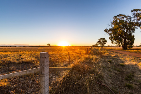 A dirt road through farmland at sunset. Central Victoria. Фото со стока