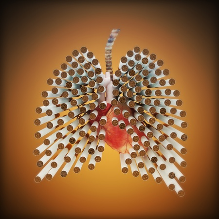 lung bronchus: Smoking kills concept , cigarettes in the form of lungs . Part of a health abuse series.  Stock Photo