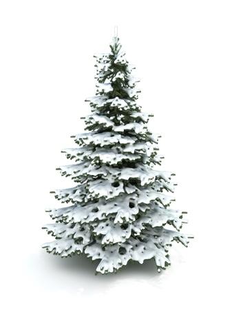 小ぎれいなな木 (クリスマス ツリー) は雪で覆われています。冬の木シリーズ 300 の D.P.I 画像の一部は白色の背景上に分離されて 写真素材
