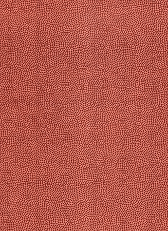 Football leather texture , High resolution Stock Photo - 11327164