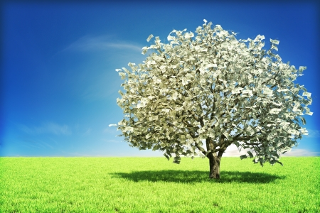 Money tree concept with room for text , or copy space  Stock Photo - 12376550