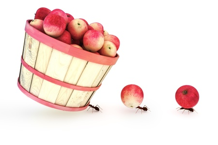 Ants carrying apples, one carrying a bushel. Over achievement, dedication,challenging ,standing out from the crowd concept.