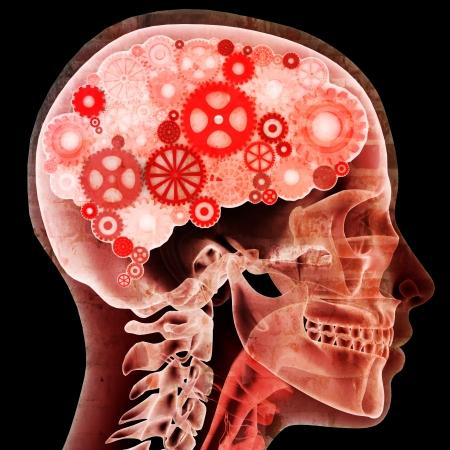mental object: pensador NTELECTUAL, radiograf�a femenina con los engranajes de cerebros, versi�n grunge concepto masculino tambi�n disponibles