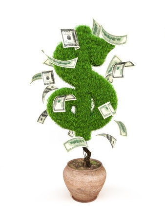 miracle tree: Money tree, potted tree in the form of a dollar sign with 100 dollar bills around it.  Stock Photo