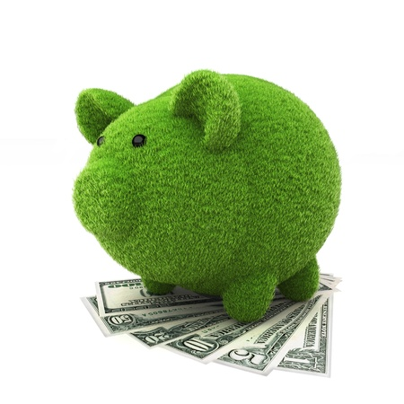 Grass covered piggy bank on top of money , ecology savings concept  photo