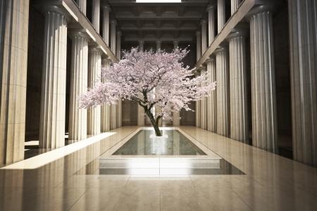 sencillez: Árbol de de la cereza en la interior de un edificio Foto de archivo