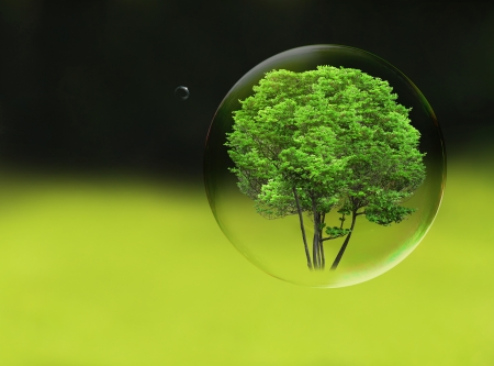sphere: Tree in a bubble, room for text or copy space