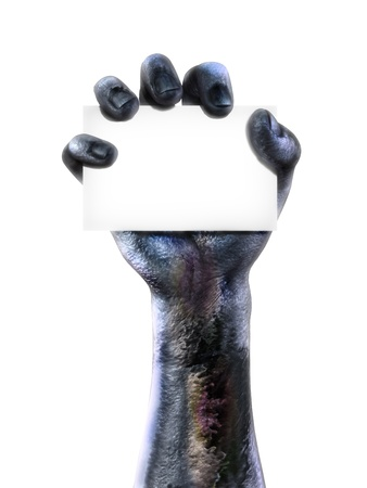creepy hand: Zombie hand holding a black card  Room for text or copy space for advertisment on a white background  Stock Photo