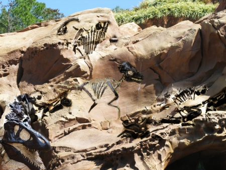 Fossil rock, Prehistoric dinosaur fossil s revealed in an eroded rock formation  Фото со стока