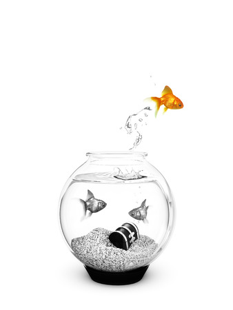 Colored Fish jumping out of a Black and White Fishbowl Getting away from the ordinary , breaking free concept