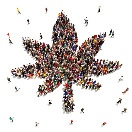 marijuana plant: A Large group of people that support marijuana for medical or recreational uses   Stock Photo