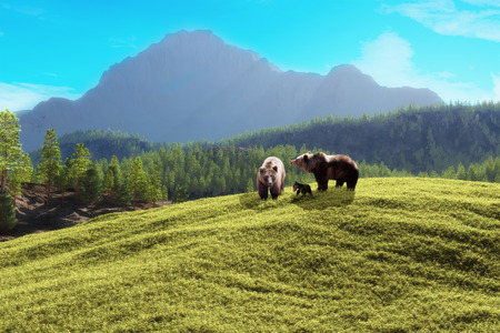 Bear mountain  Family of bears with a majestic mountain background  photo