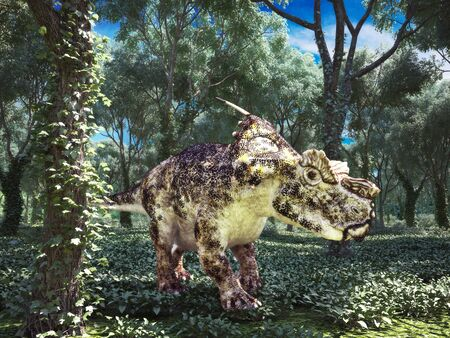 roaming: Achelousaurus prehistoric dinosaur roaming the woods.
