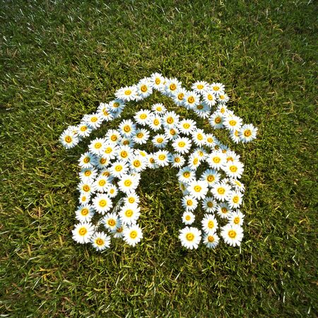 spring: Fresh Spring Daisie flowers in the shape of a house on a field of grass