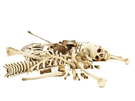 huesos: Pila de huesos, foto realista representación 3D sobre un fondo blanco aislado.