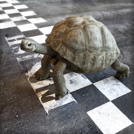 business rival: Slow and steady wins the race. A turtle crossing the finish line of a race. Ambition , goals ,determination, successful , achievement concept in business and life . 3d rendering