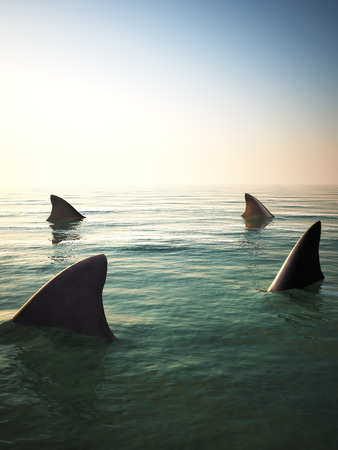 Shark fins circling above the ocean water. 3d rendering Фото со стока - 64765224