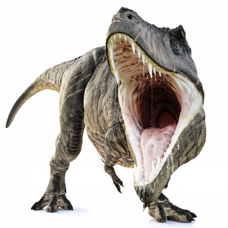 A Tyrannosaurus Rex attack on an isolated white background . 3d rendering Stock Photo