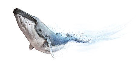 Humpback whale on a white background. Dispersion abstract wave effect  3d rendering