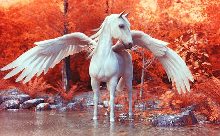 Mythischer Pegasus posiert in einem verzauberten Wald. 3D-Rendering Standard-Bild - 77675917