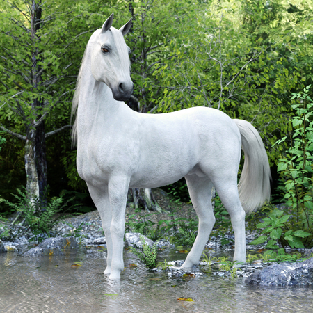 White stallion horse posing with a lake and woods background. 3d rendering Stock Photo