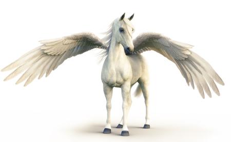 Mythische weiße Pegasus posiert auf weißem hintergrund isoliert. 3D-Rendering