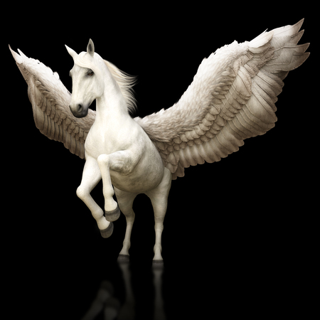 ペガサスの壮大な神話ギリシャ有翼の黒い背景に馬。3 d レンダリング