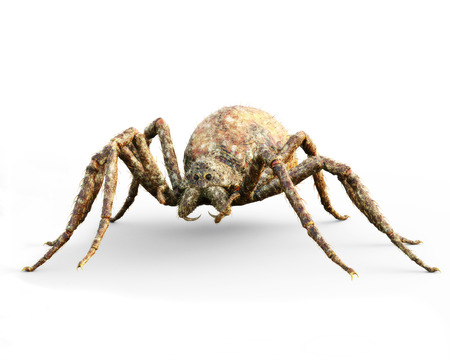 Enormous plague ridden fantasy spider on a isolated white background