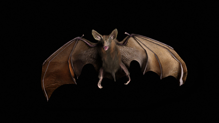 Blood thirsty vampire bat swooping in from the darkness. 3d rendering