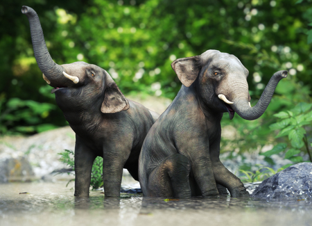 Two small baby elephants playing in the water. 3d rendering